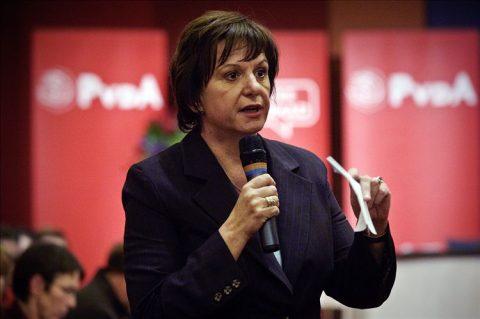 Mariette Hamer, PvdA