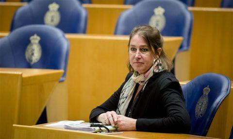Betty de Boer, VVD, Kamerlid